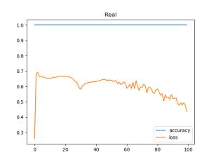 Real_acc_loss
