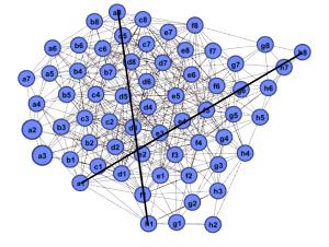 chessboard_trajectories
